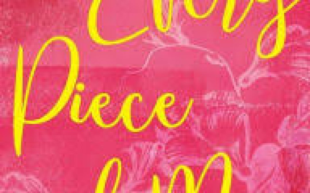 Book Giveaway: Every Piece of Me by Jerusha Clark